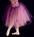 """Concerto"" Costume Adult Romantic Tutu - Style No AS1016"