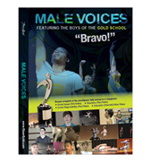 Male Voices 6 Part Miniseries DVD