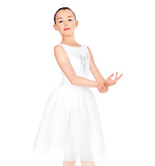 Winter Dreams Child Romantic Tutu Dress