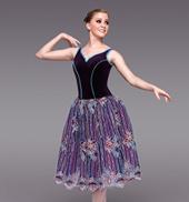 Mystique Adult Romantic Tutu Dress