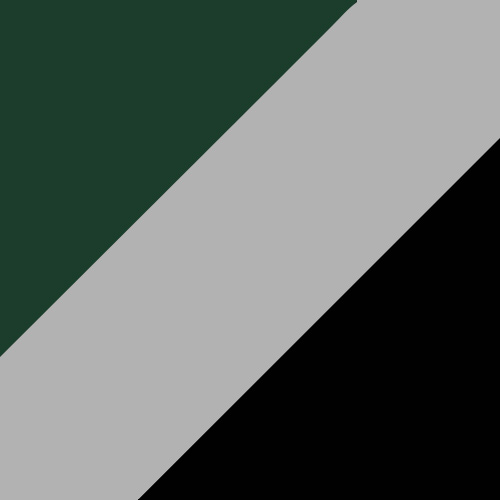 Dark Green/Silver/Black