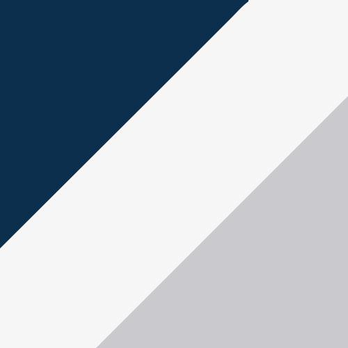 Navy/White/Metallic Silver