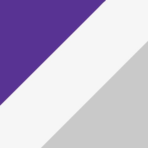 Purple/White/Metallic Silver