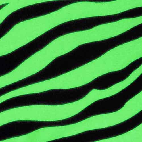 Lime Zebra