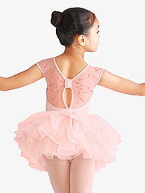 Girls Embroidered Floral Mesh Ballet Tutu Dress