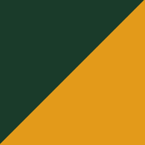 Dark Green/Gold