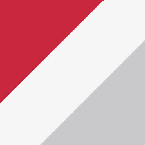 Red/White/Metallic Silver