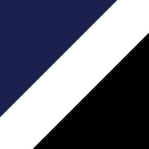 True Navy/White/Black