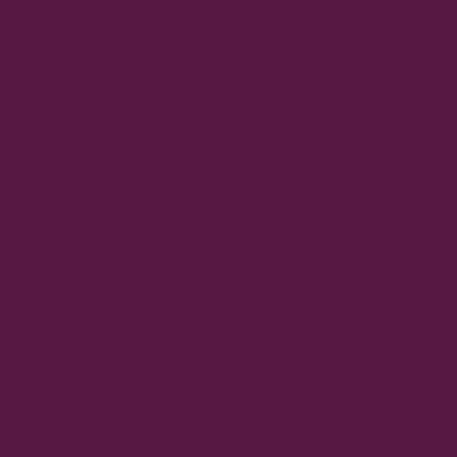 Eggplant/Purple Mesh
