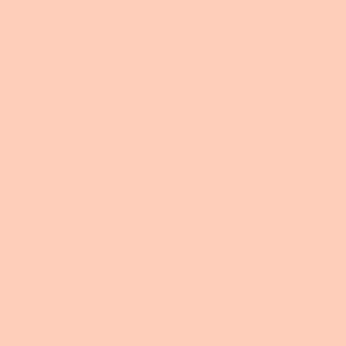 Ballet Pink